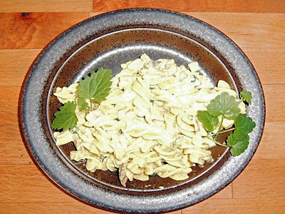 Curry-Nudelsalat